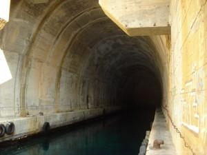 Vis ubaadstunnel