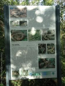 slanger Krka