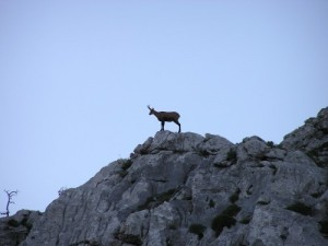 Velebit National park Kroatien