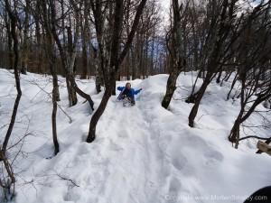 Ida i sneen